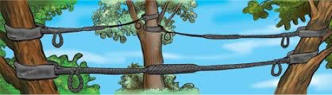 Dynamic Cabling - Pikes Tree Care