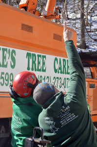 Pikes Tree Care Professional Tree Service