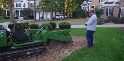 Stump Grinding-Pikes Tree Care